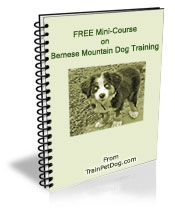 Dogs Bernese Mountain Dog Free Training Course On