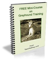 Val is an internationally recognized Expert Animal Communicator and