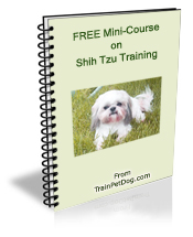 Dogs Shih Tzu Free Training Course On Shih Tzus