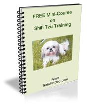 Dogs Shih Tzu Free Training Course On Shih Tzus